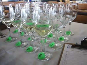oyster wine glasses