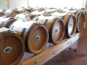 Vinegar patiently aging at Venturi Schulze